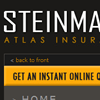 Steinman Agency
